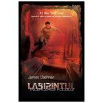 Labirintul. Încercările focului (vol. 2)