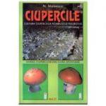 Ciupercile - N. Mateescu