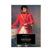 Napoleon. Cantecul de plecare - Vol 1