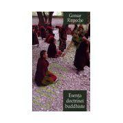 Esenta doctrinei buddhiste. Calea spre trezie