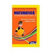 Matematica. Exercitii si probleme. Clasa a VI-a, semestrul II 2012-2013