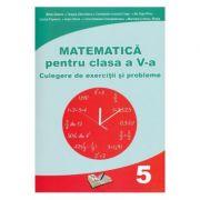 Matematica Clasa a 5 a  Culegere de exercitii si probleme  Mihai Zaharia, Dragos Dinculescu