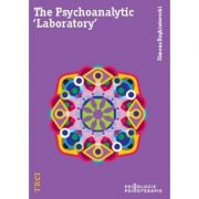 The Psychoanalytic 'Laboratory'