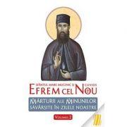 Sfântul Efrem cel Nou. Mărturii ale minunilor săvârşite în zilele noastre. Vol. 2