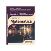 Culegere de matematica. Filiera teoretica, specializarea matematica-informatica. Clasa a X-a - Marius Burtea, Georgeta Burtea