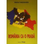 Romania ca o prada - Radu Theodoru