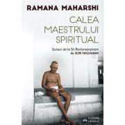 Calea Maestrului Spiritual - scrisori de la Sri Ramanasramam (II)