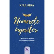 Numerele ingerilor (Angel Numbers) - Kyle Gray