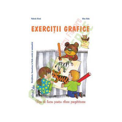 EXERCIŢII GRAFICE - Caiet de lucru pentru clasa pregătitoare