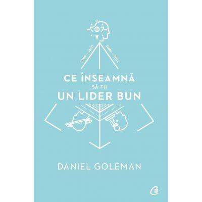 Ce inseamna sa fii un lider bun - Daniel Goleman