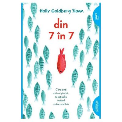 Din 7 in 7 - Holly Goldberg Sloan