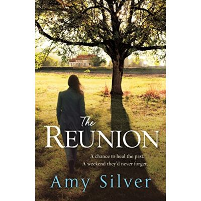 The Reunion Amy Silver